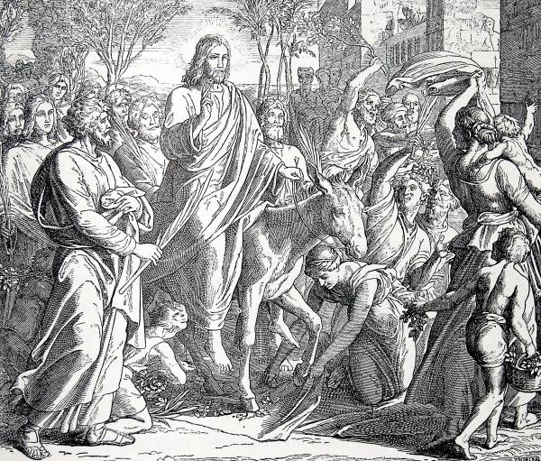 E DELLA PASSIONE DEL SIGNORE PIAZZA SAN PIETRO,  XXXIII Giornata Mondiale della Gioventù, Libro di Isaia